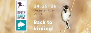 Delta Birding Festival 2021 @ Delta de l'Ebre